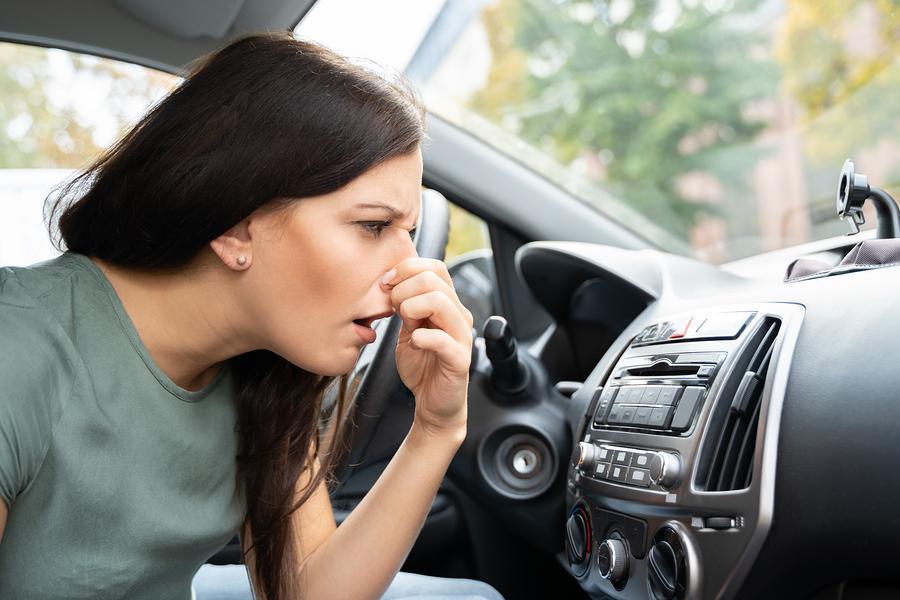 Safety Inspection Automotive Service
